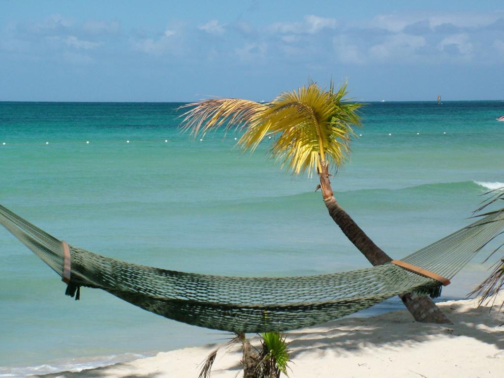 BRIDAL GUIDE: Jamaican-Me CRAZY!